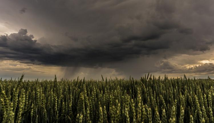 POČASÍ NA SOBOTU: O víkendu nás čekají teploty okolo třiceti stupňů, déšť a bouřky
