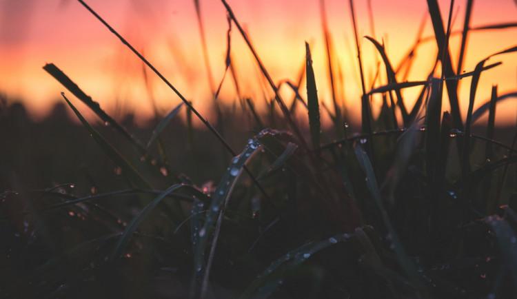 POČASÍ NA PONDĚLÍ: Začátek týdne bude ve znamení polojasné až oblačné oblohy a deště