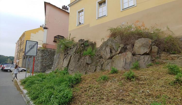 Aktivisté ze Zachraňme Floru Olomouc ozdobí skálu u Michalských schodů skalničkami. Bude jich až dvě stě