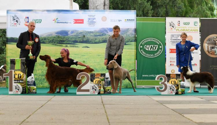 BLESKOVÁ SOUTĚŽ: Vyhrajte vstupenky na národní výstavu psů Floracanis