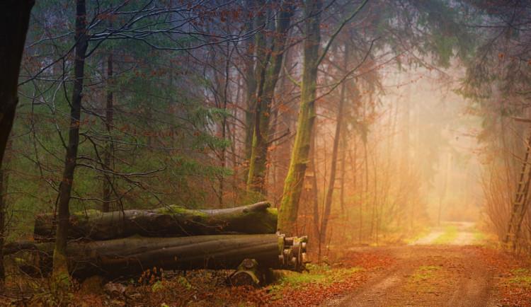 POČASÍ NA PONDĚLÍ: Ráno bude jasno, místy se objeví mlhy a déšť