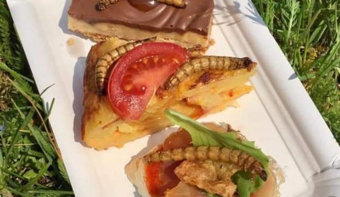 VÍKEND PODLE DRBNY: Zajděte na vymazlené burgery, ochutnejte hada nebo pomozte uklidit Přáslavice
