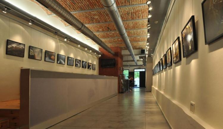 Přerovská knihovna slaví 100. výročí. V galerii se chystá rozsáhlá výstava