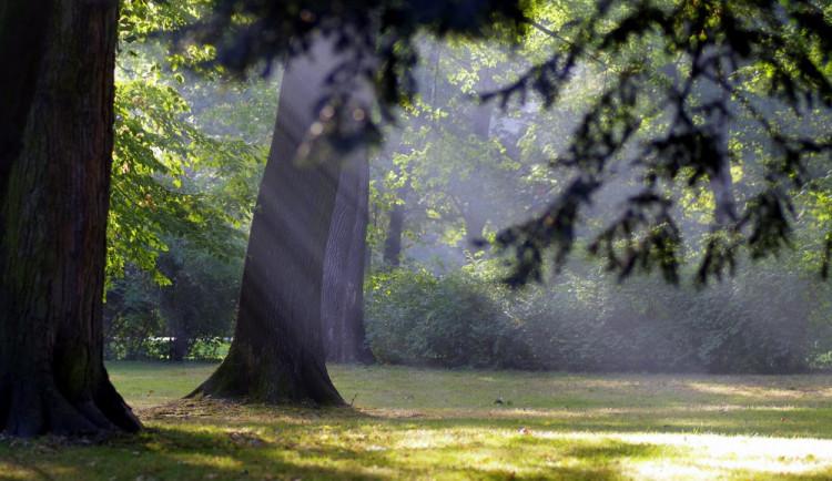 POČASÍ NA ČTVRTEK: Bude jasno až polojasno, ráno ojediněle mlhy