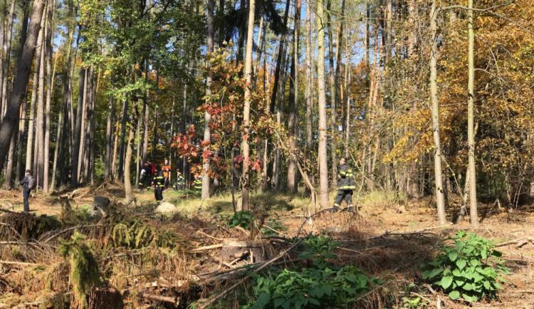 Pohřešovaný houbař byl nalezen bez známek života
