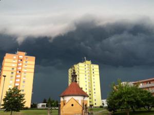 Danuše Zakopalová - Nové Sady